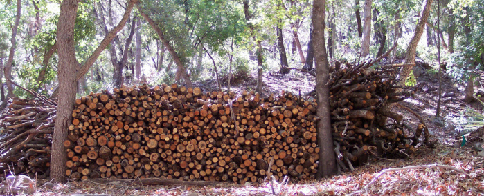 Sustainably harvested wood